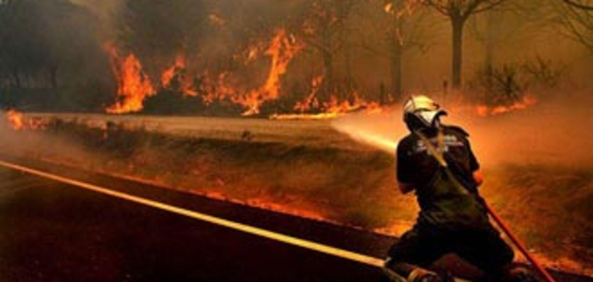 У Росії порахували постраждалих від пожеж