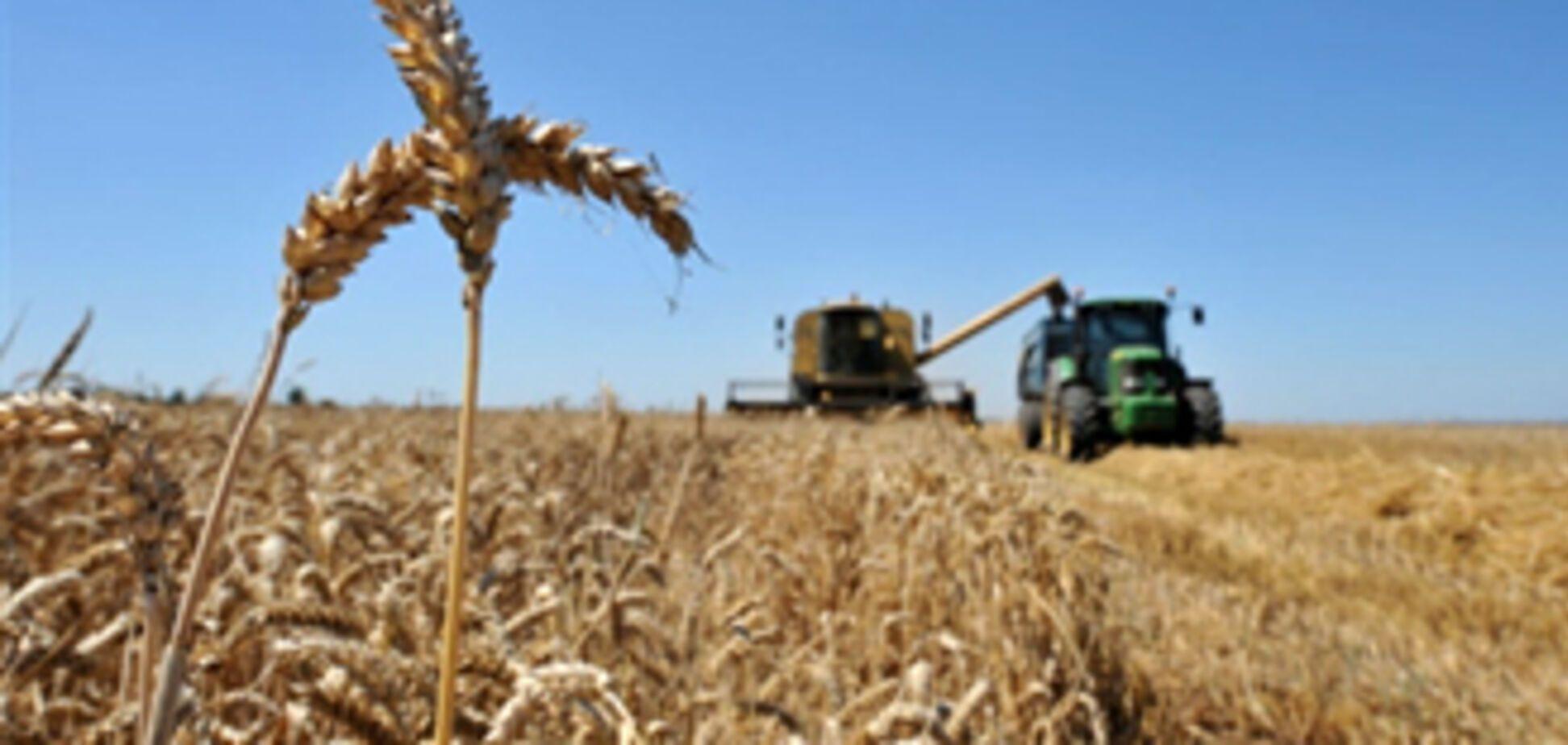 Україна налякала ООН поганим врожаєм