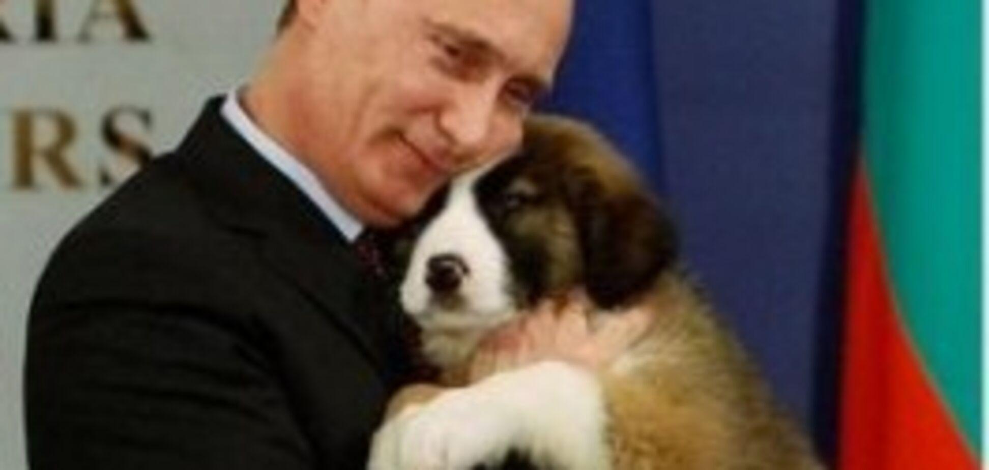 Перед візитом Путіна винищували російських собак
