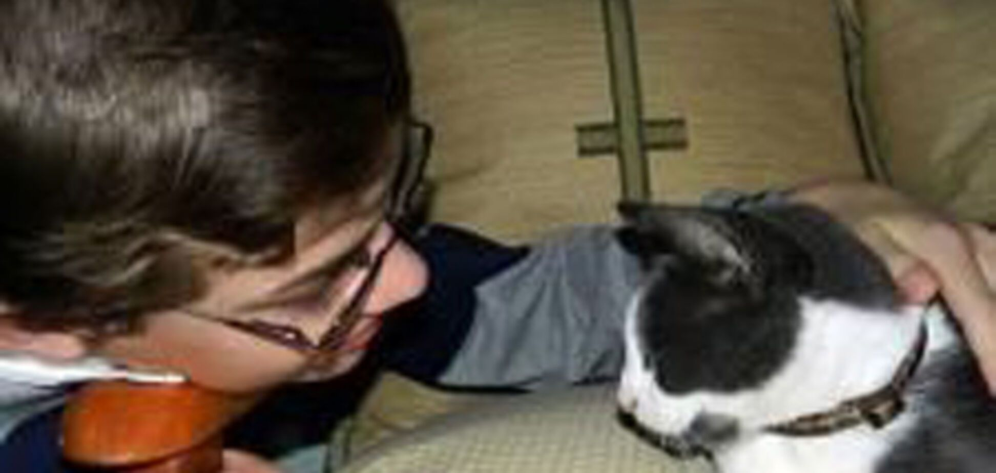 Віднесений вітром кіт повернувся через 5 років