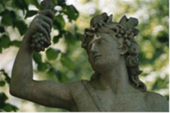 Зачем древние греки разбавляли вино?
