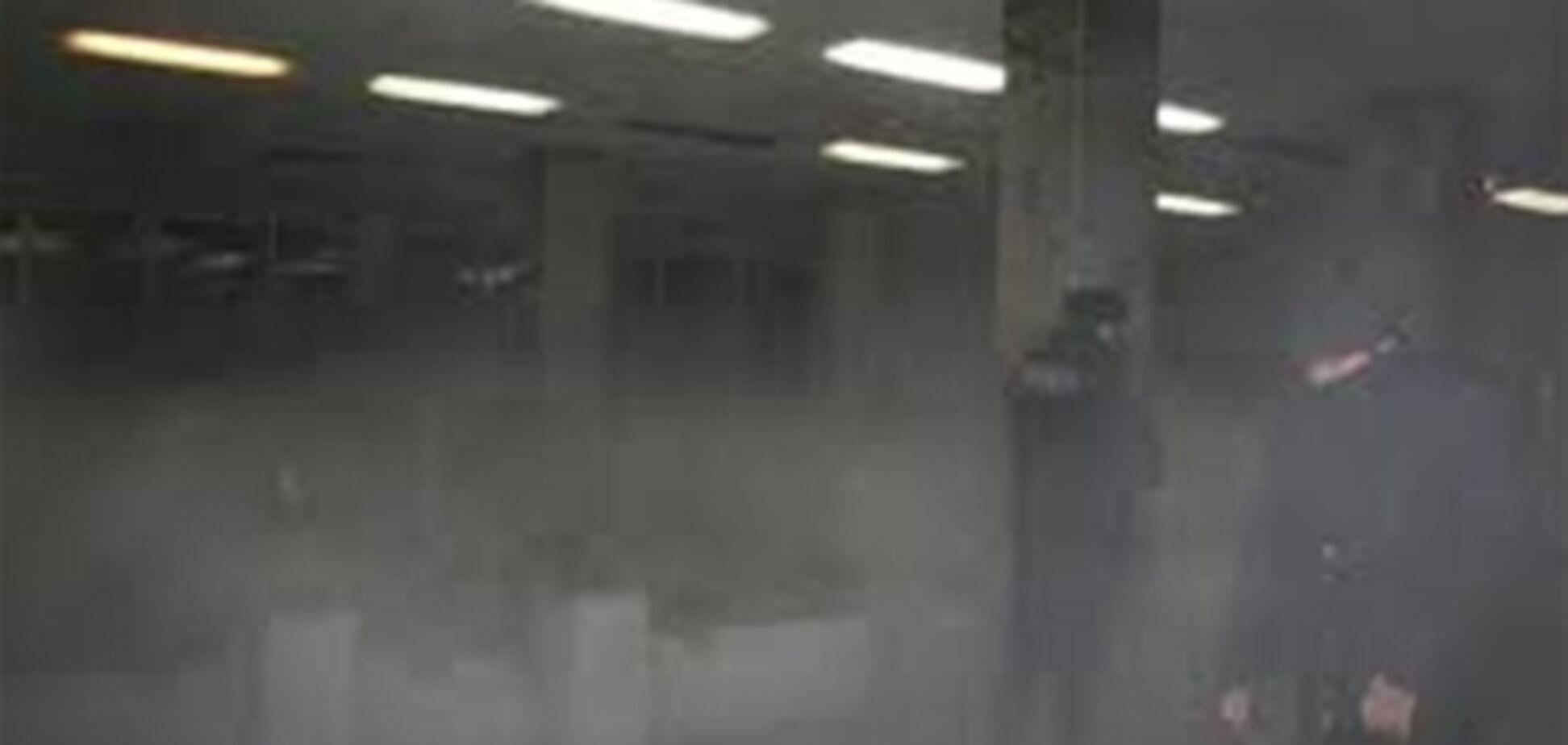 Живодерство от ДПС. Травили газом водителя с собакой. Видео
