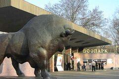 Киевский зоопарк выселят из центра Киева