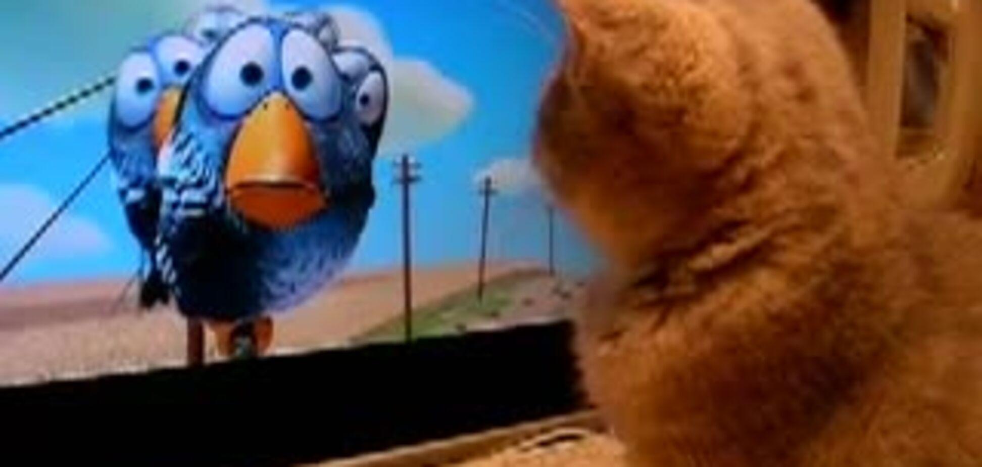 Котэ смотрит мульт от Pixar