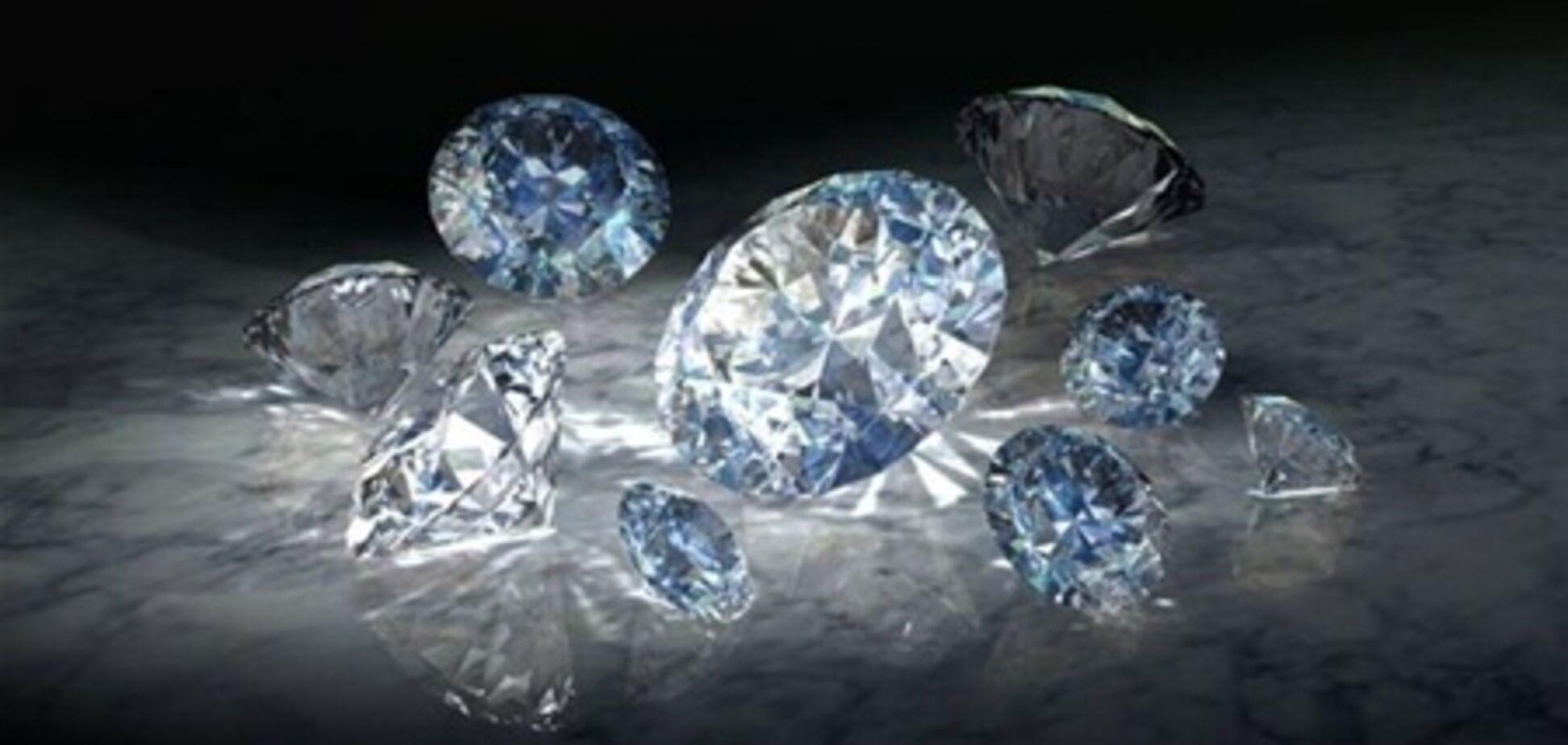 Cобака проглотила бриллиантов на $10 тыс