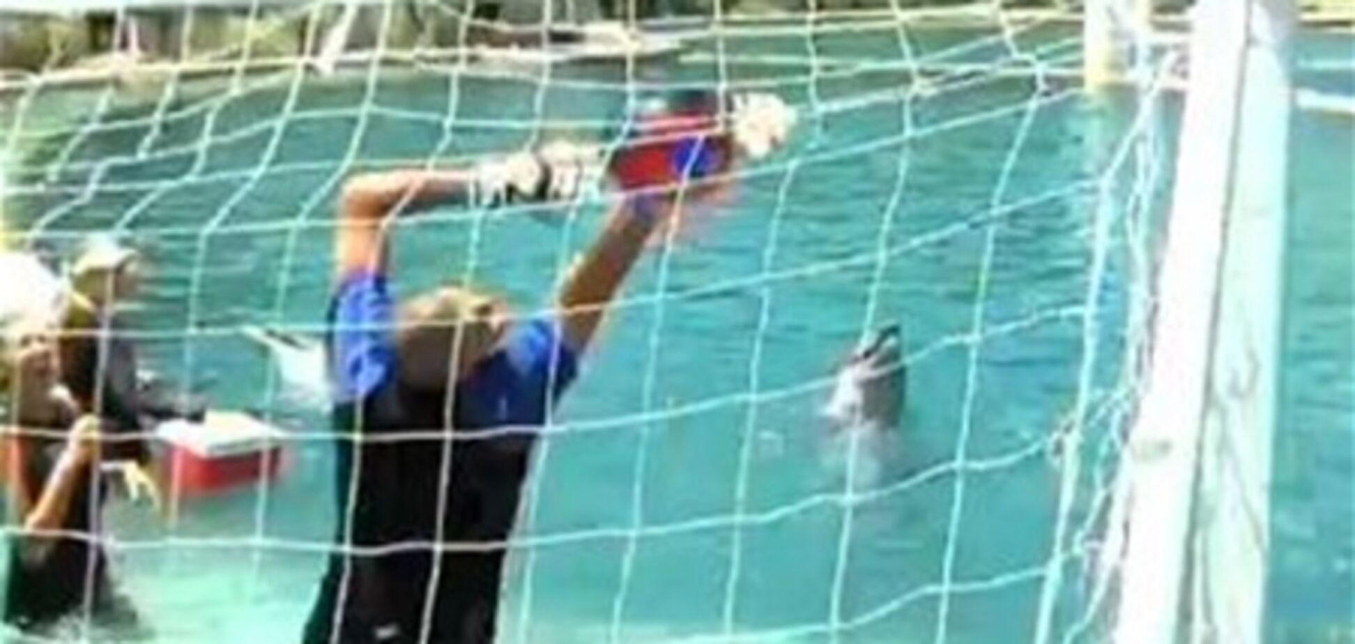 Дельфин забил гол вратарю 'Барселоны'