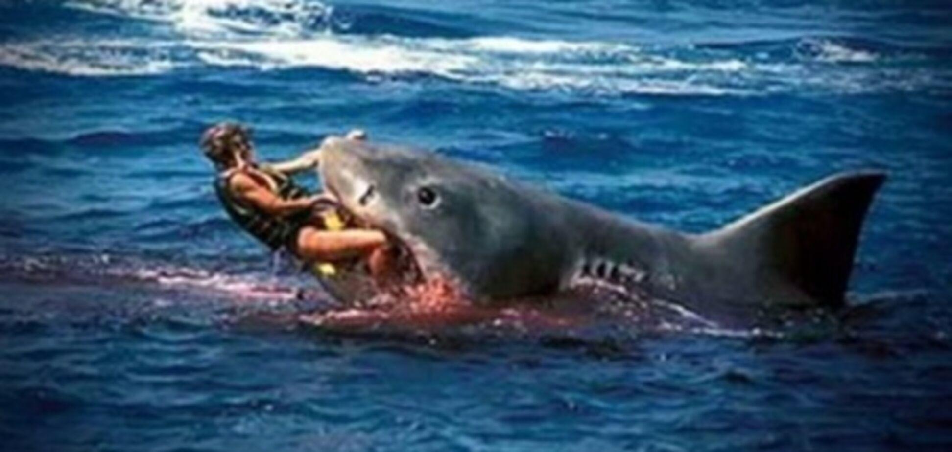 В Приморье выловили двухметровую акулу