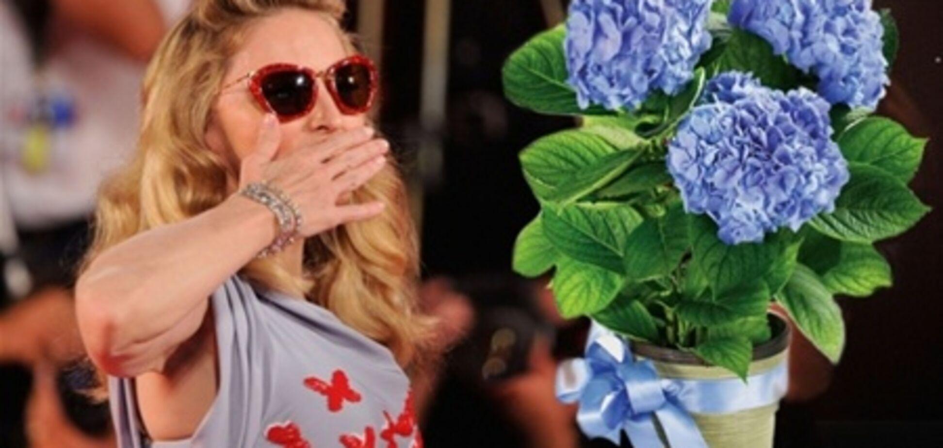 Мадонна потеряла сон из-за украинского журналиста