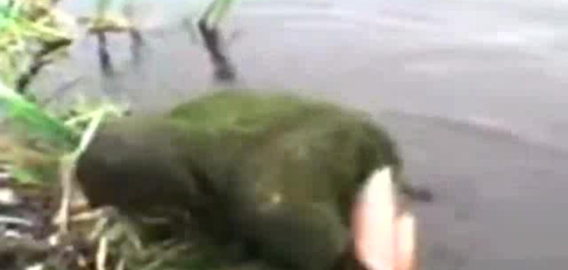 Валера купается в болоте