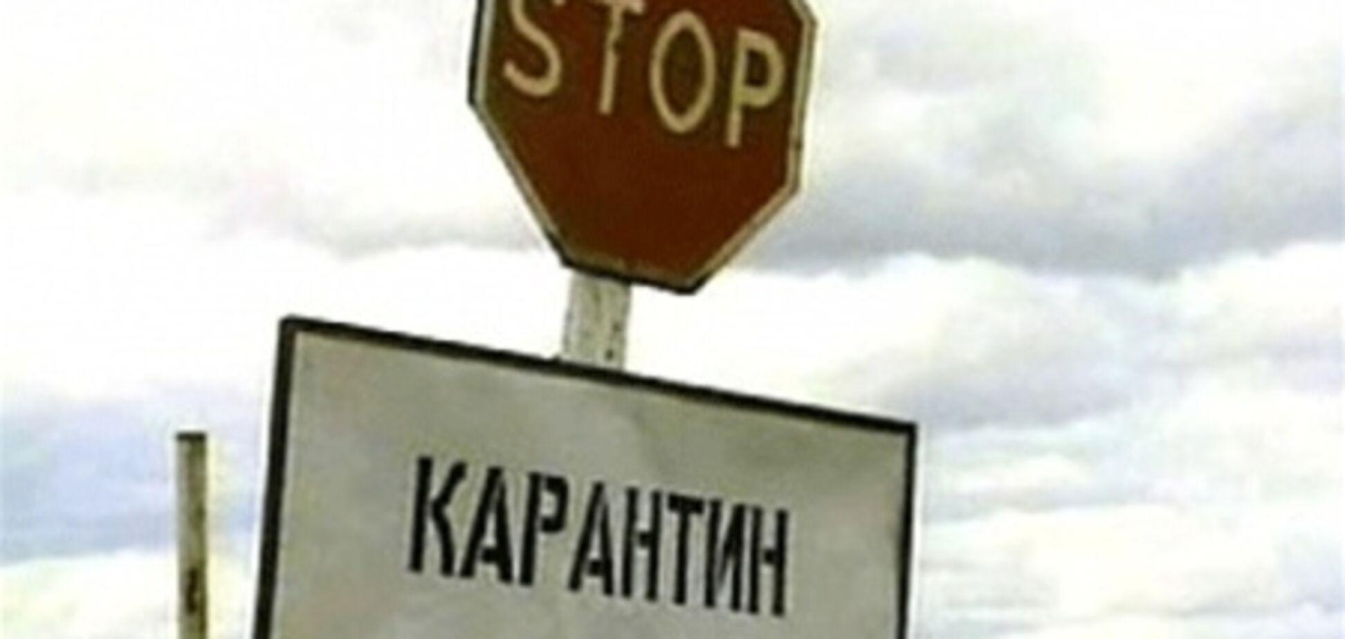 К весне в Киеве снимут карантин по бешенству