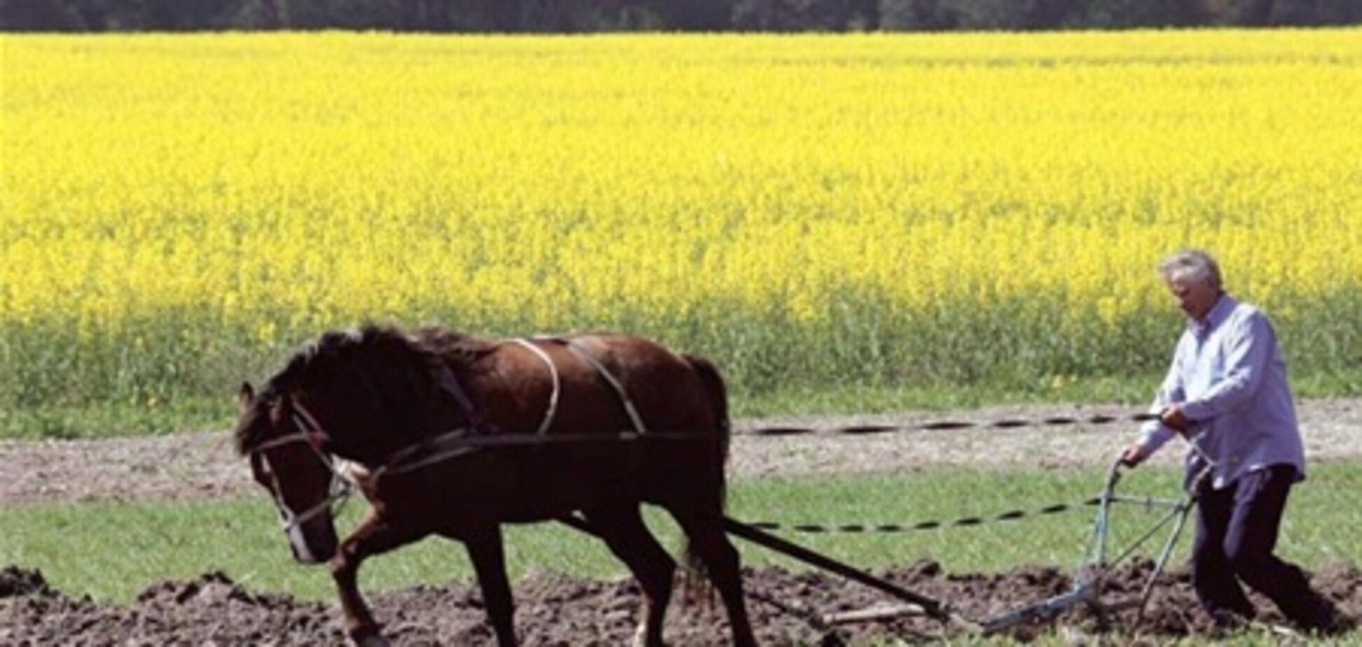 Украина будет поддерживать курс на развитие сельского хозяйства - Азаров