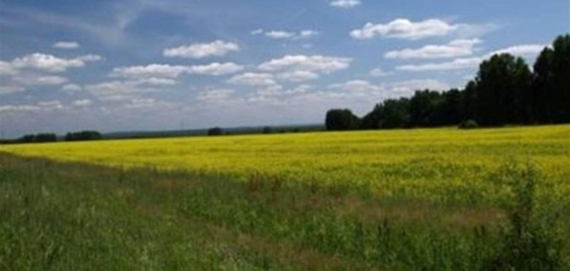 В прошлом году прокуратура отсудила у Киевсовета почти 900 га земли