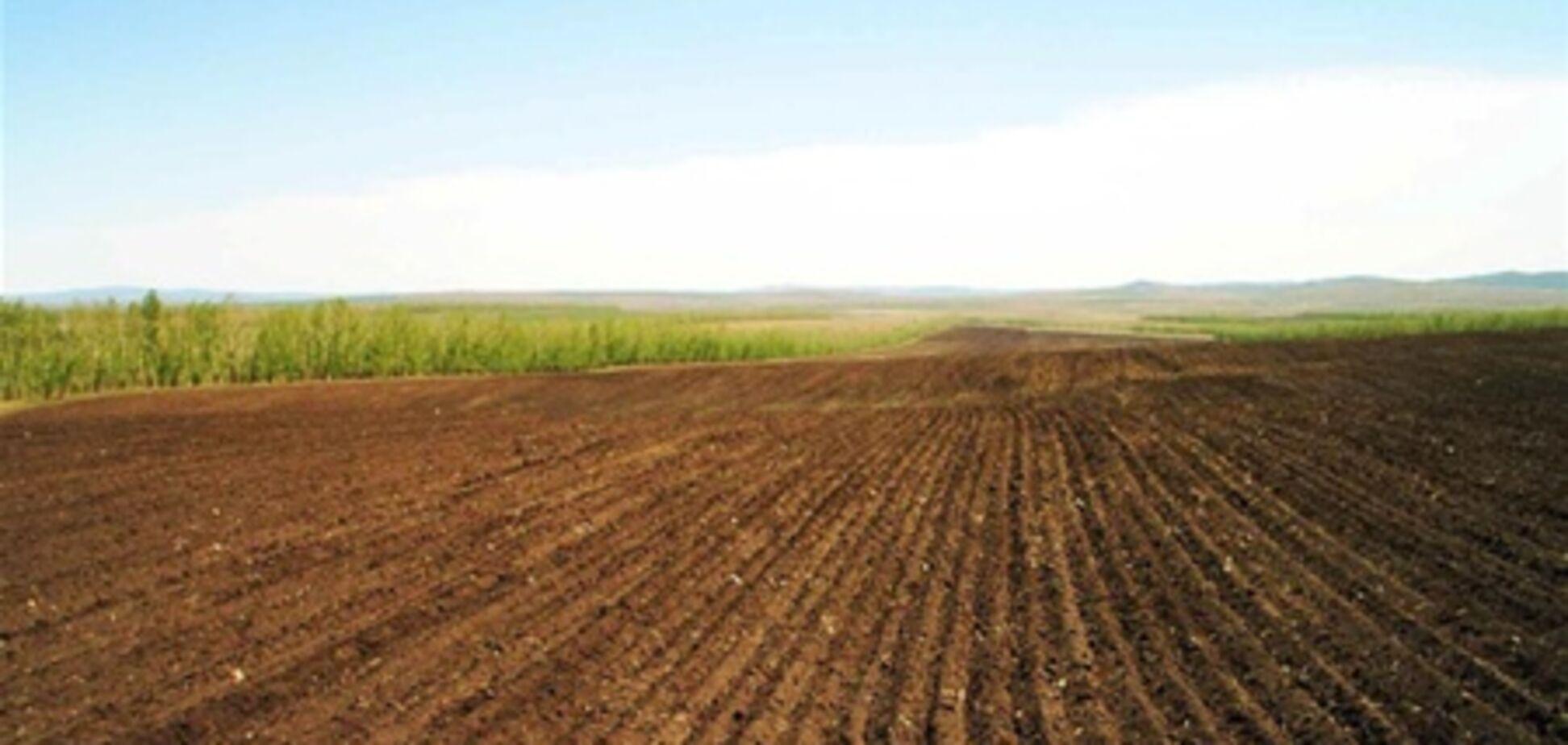 На Киевщине депутат присвоил более 200 гектаров земли