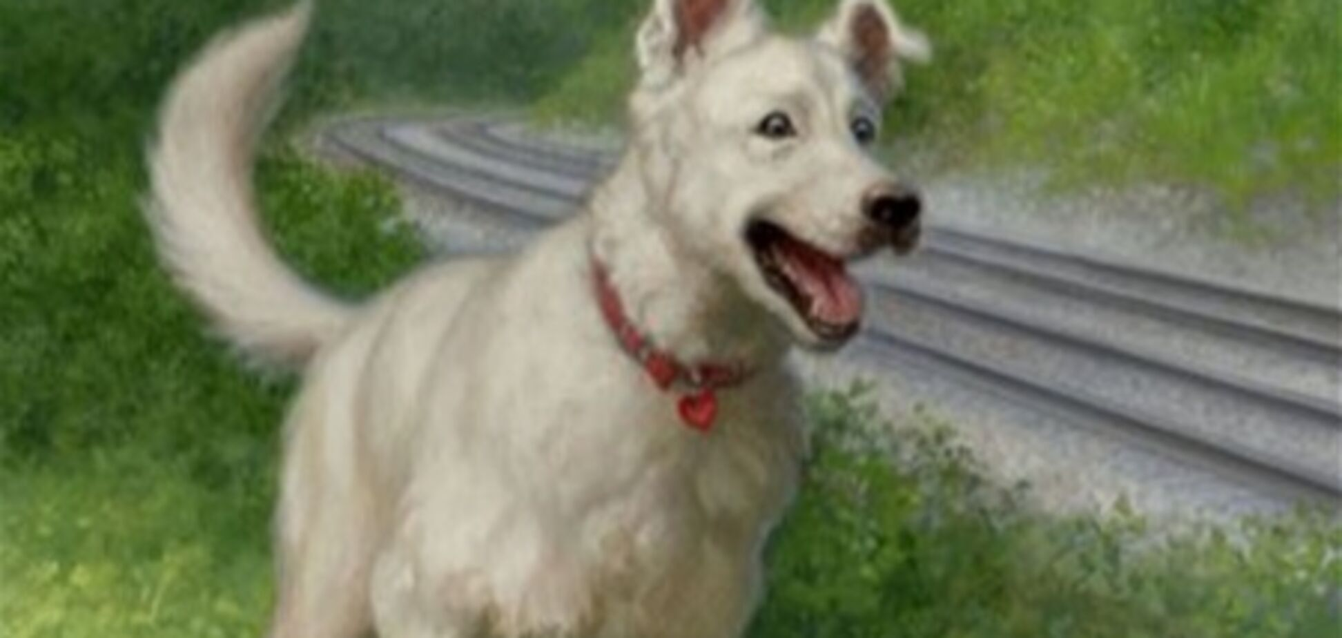 В Италии пес спас от пожара более 40 человек
