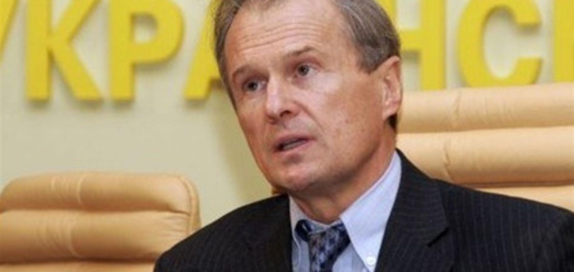 Костенко хоче об'єднати кілька партій в одну