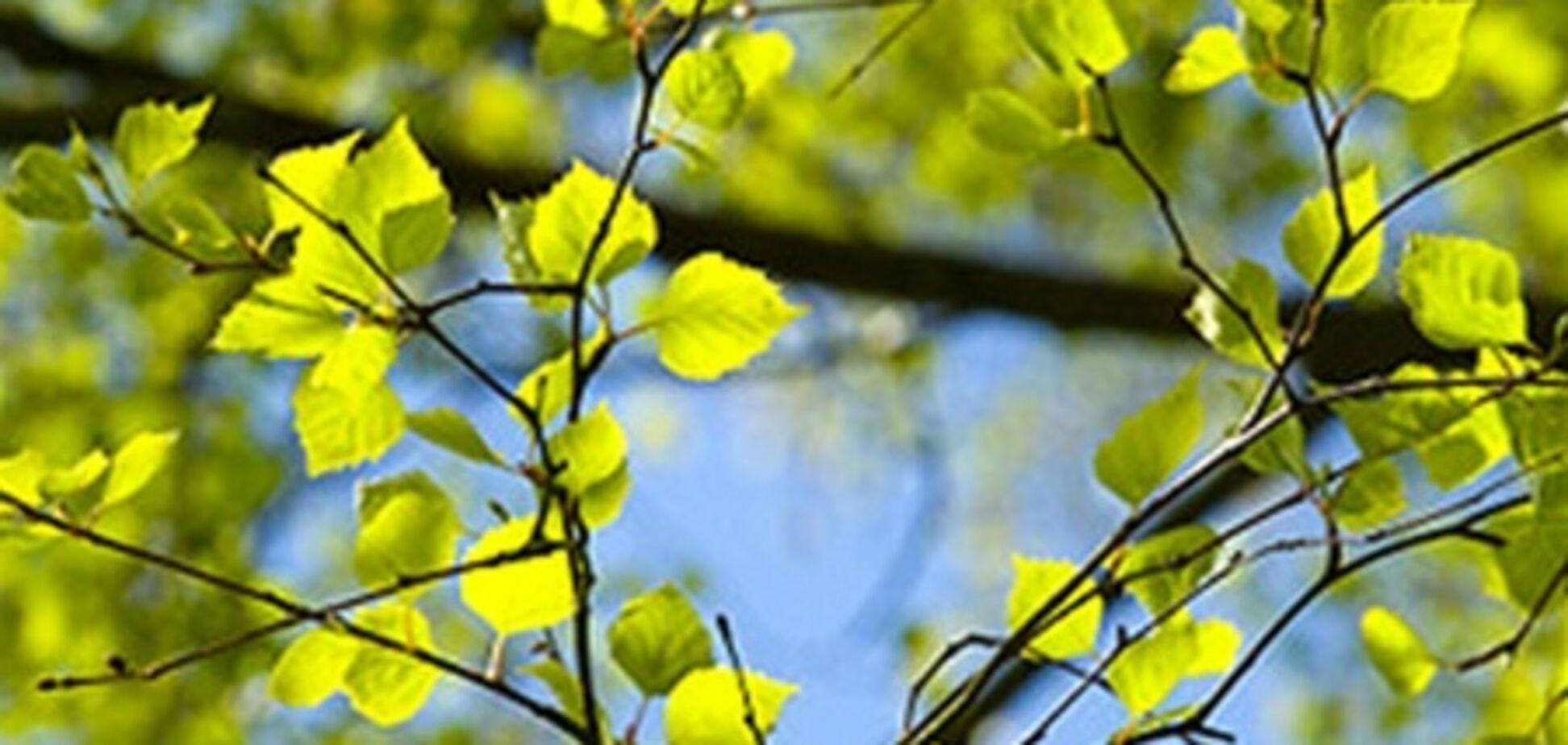На Пасху и майские праздники погода удивит