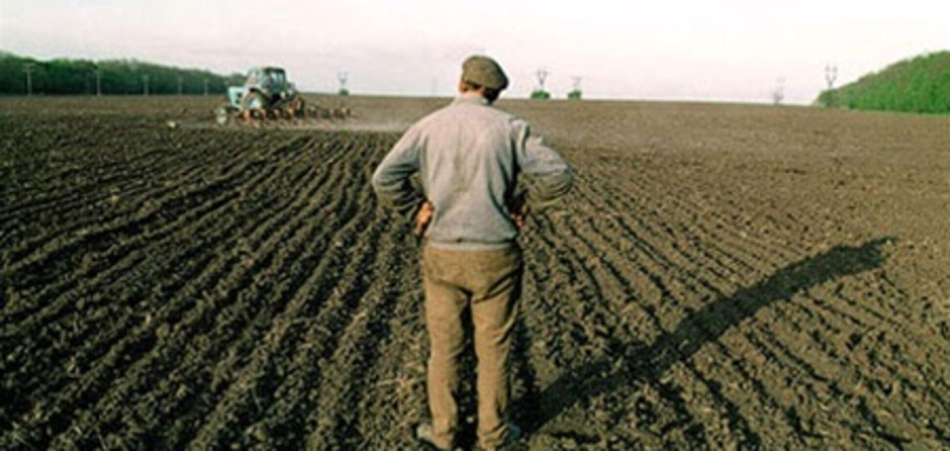 Верховная Рада выделила 120 млн гривен на земельный банк
