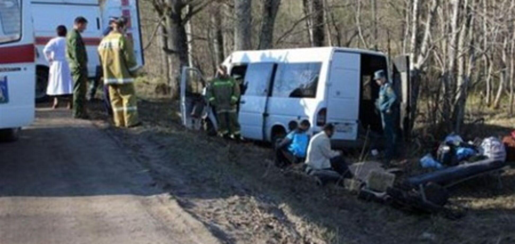 В России автобус с украинцами врезался в дерево