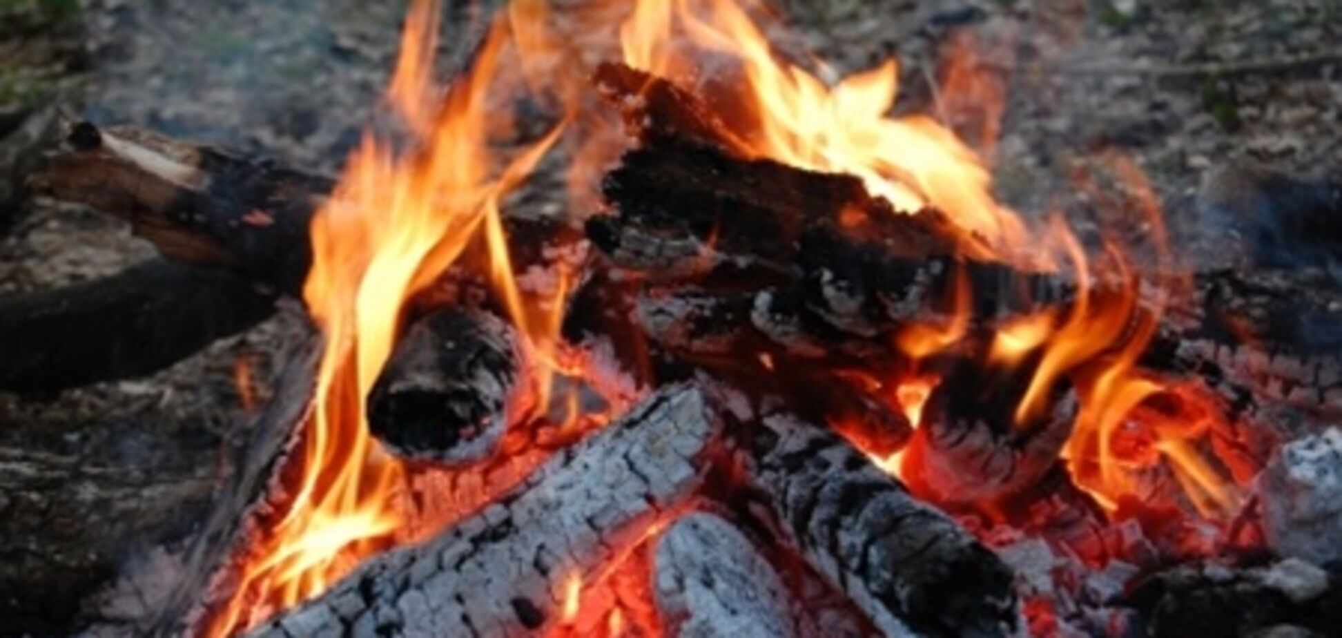 На Луганщине сгорел депутат-регионал