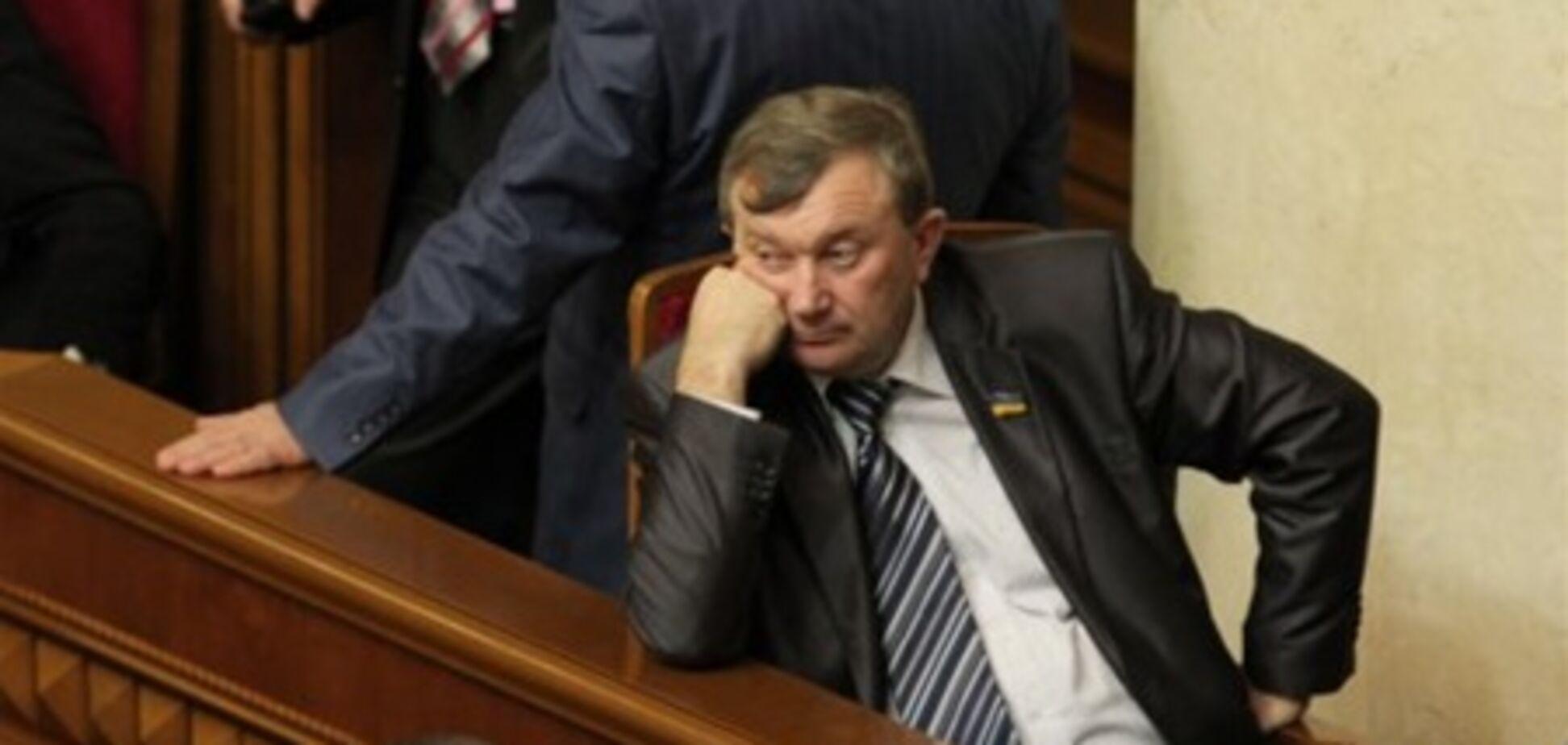 Блокирование Рады не повлияет на законотворчество - Мартынюк