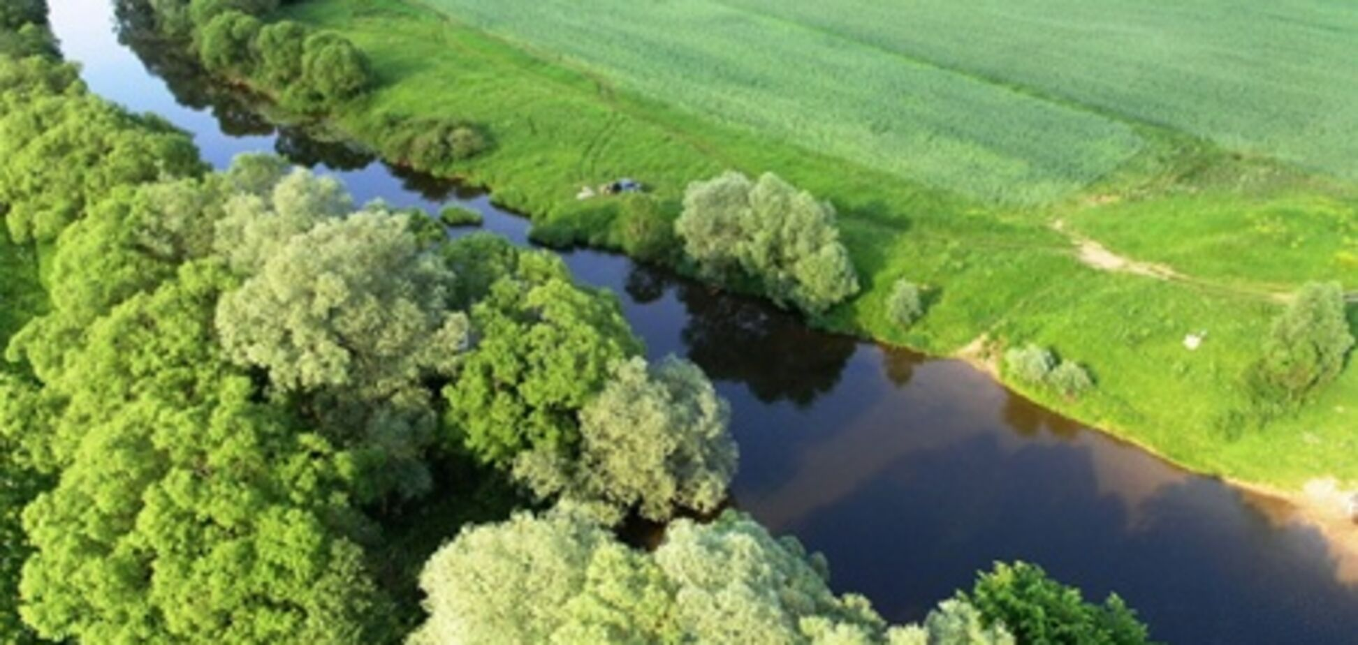 В Польше украинцам разрешено покупать до 1 га земли