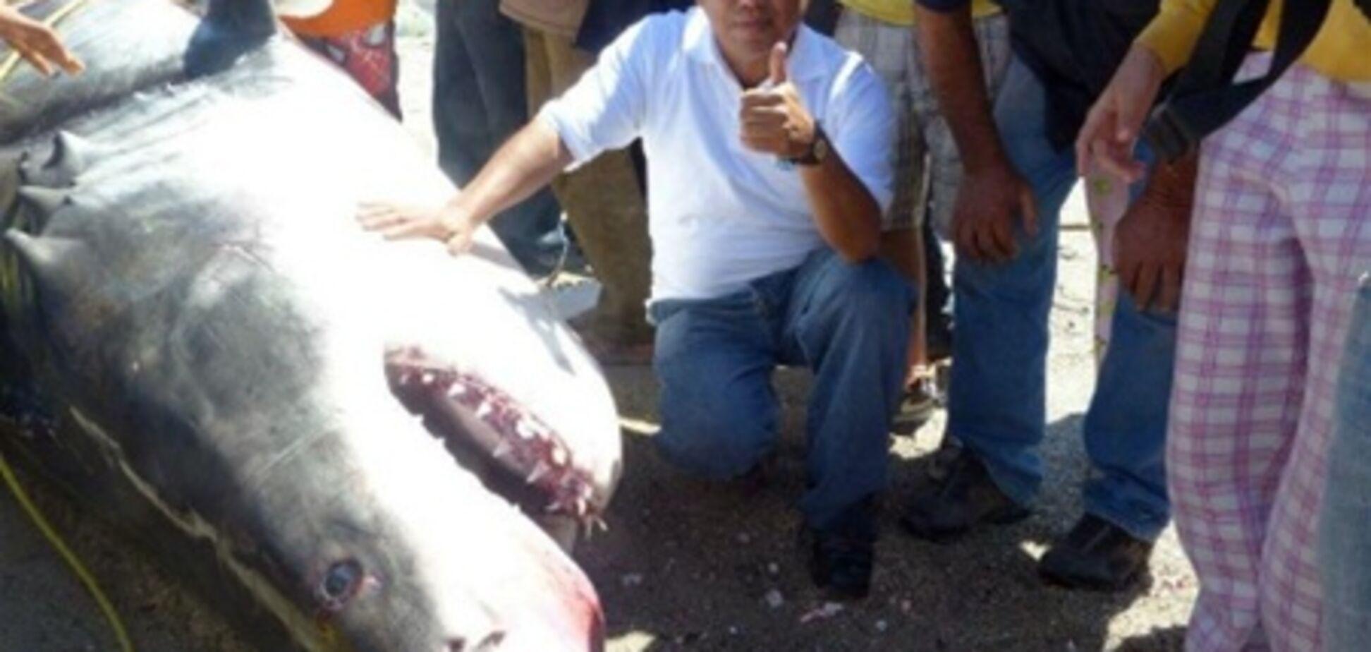 У Мексиці спіймали велику білу акулу