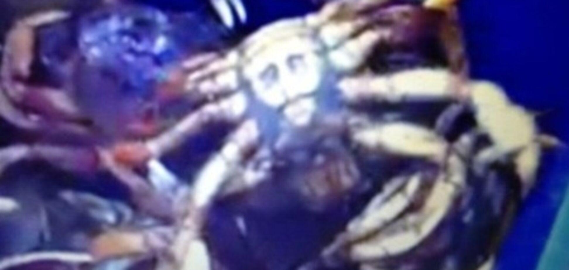 У США рибалки зловили краба з 'обличчям' бен Ладена