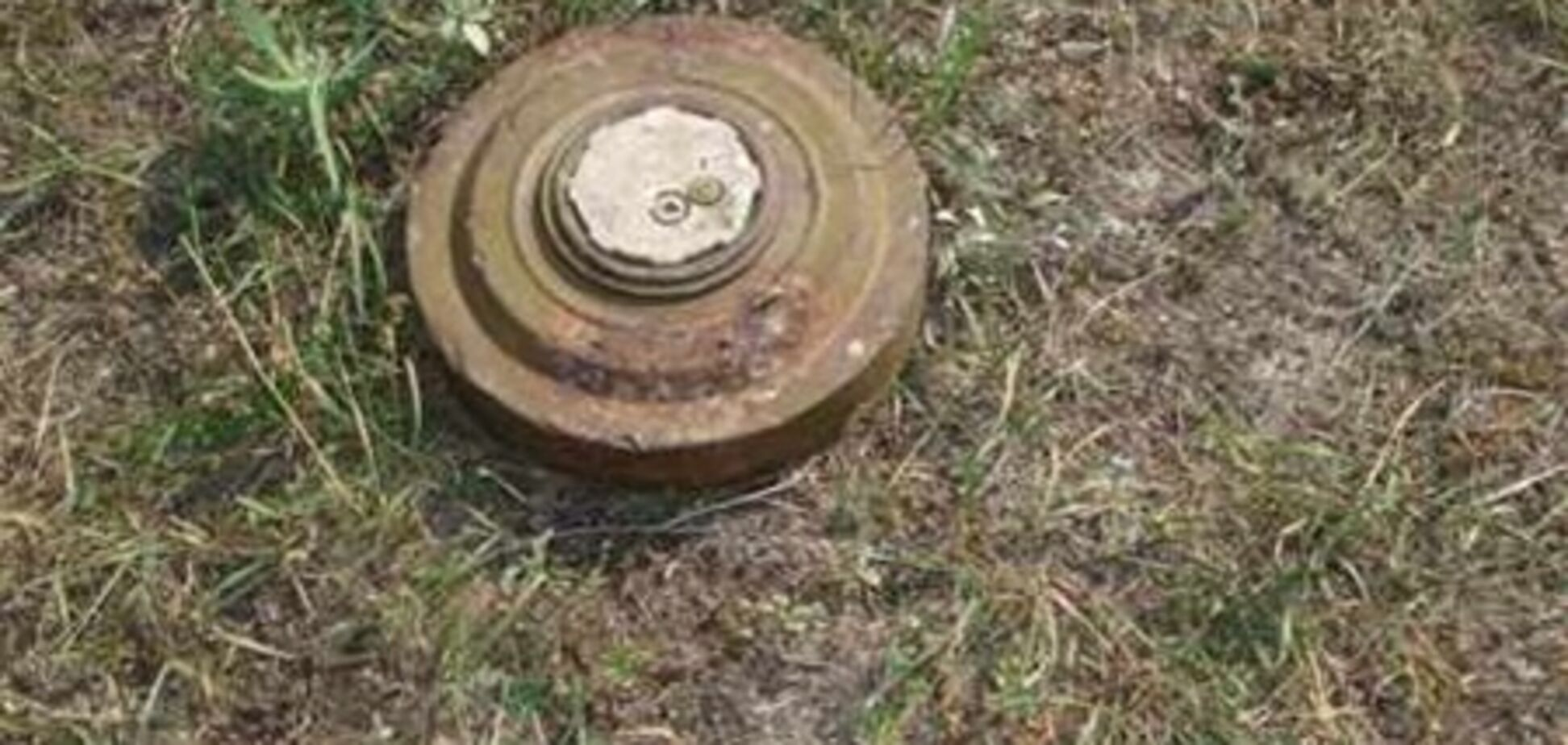 На Харьковщине в поле нашли минометные мины