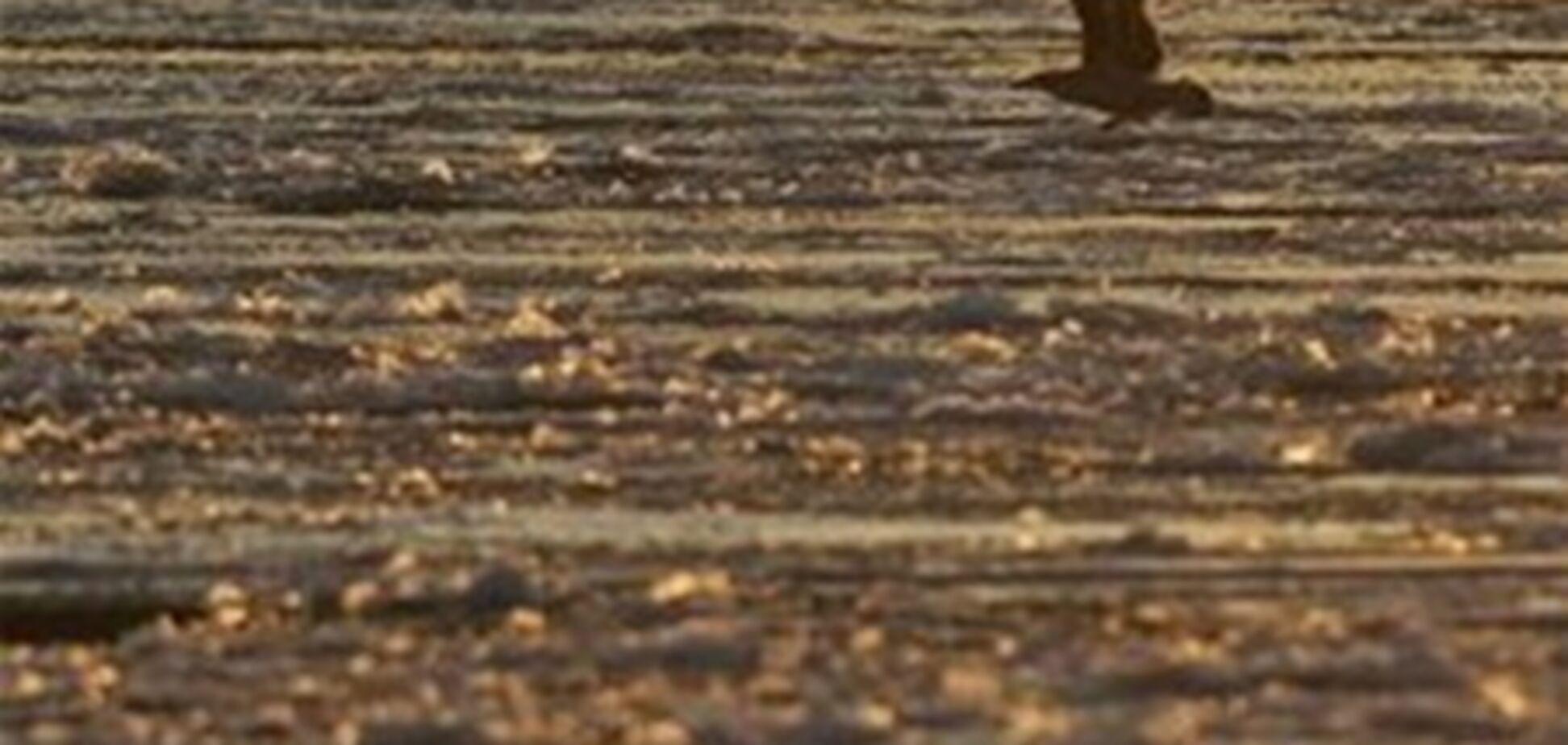 Большое нефтяное пятно обнаружили у берегов Измаила на Одесщине