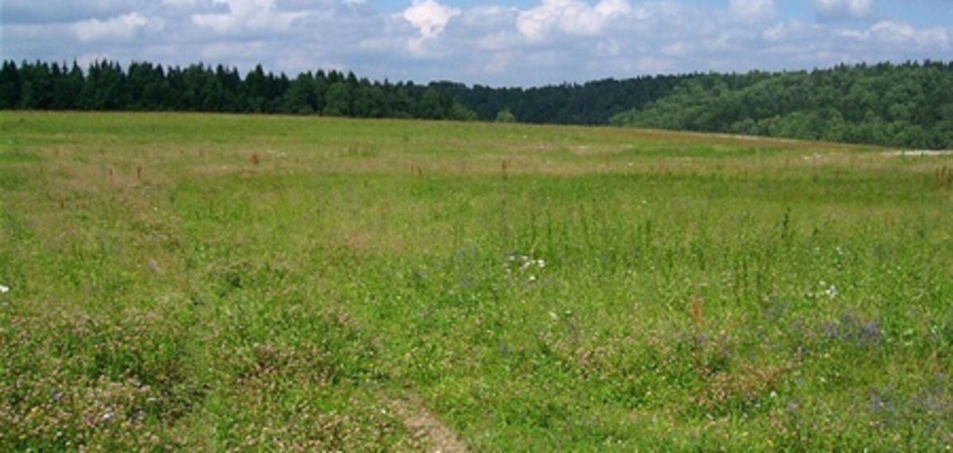 За год в Киевской области продано 14 666 земельных участков
