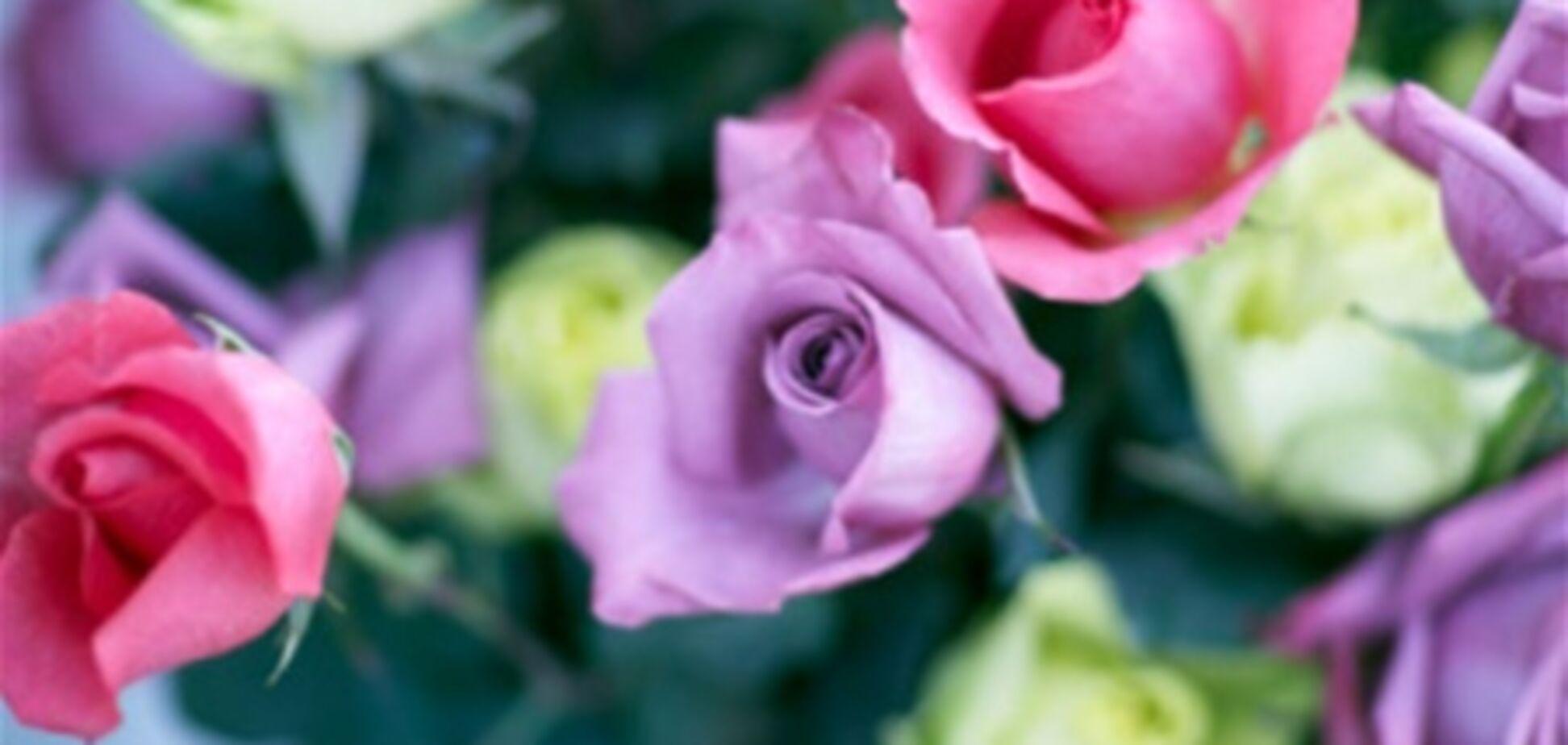 Аромат роз поможет похудеть
