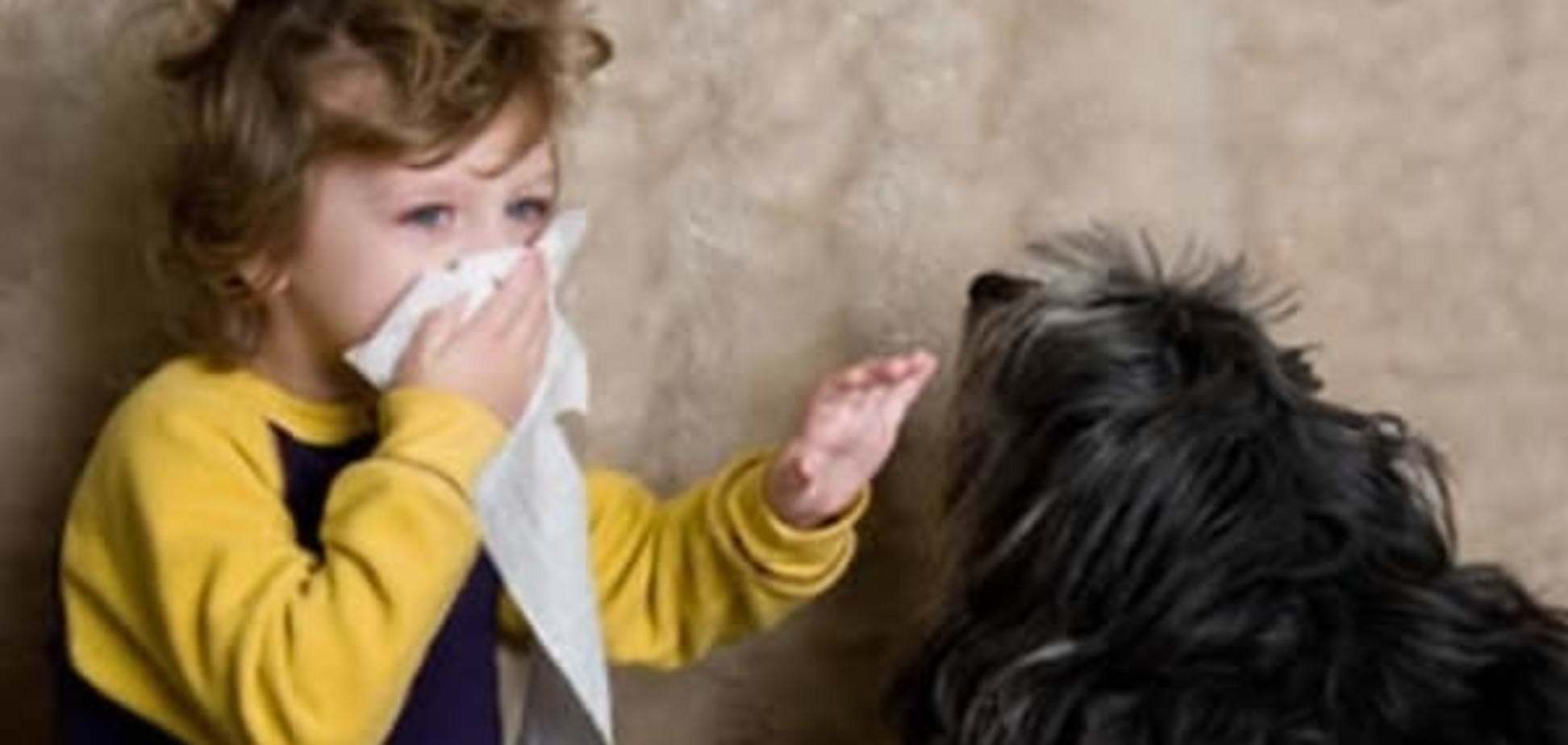Как понять, что  это аллергия на мех?