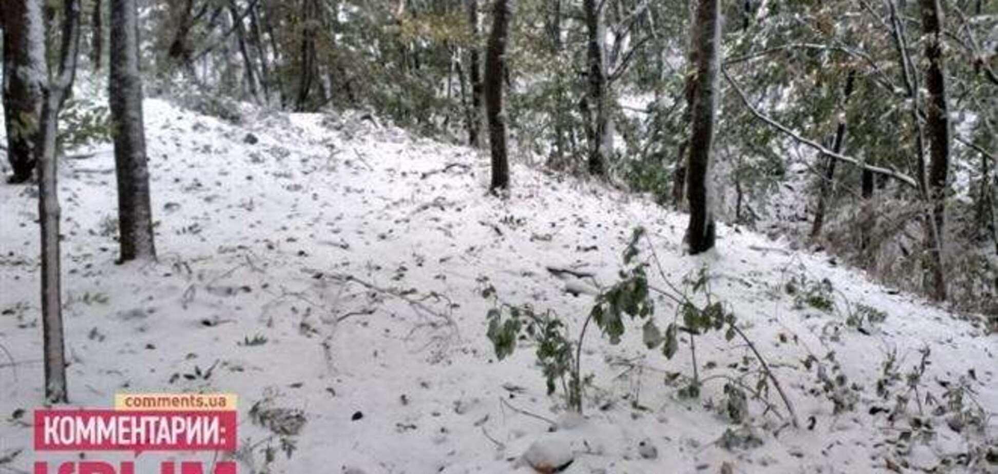 Крым заметает снегом