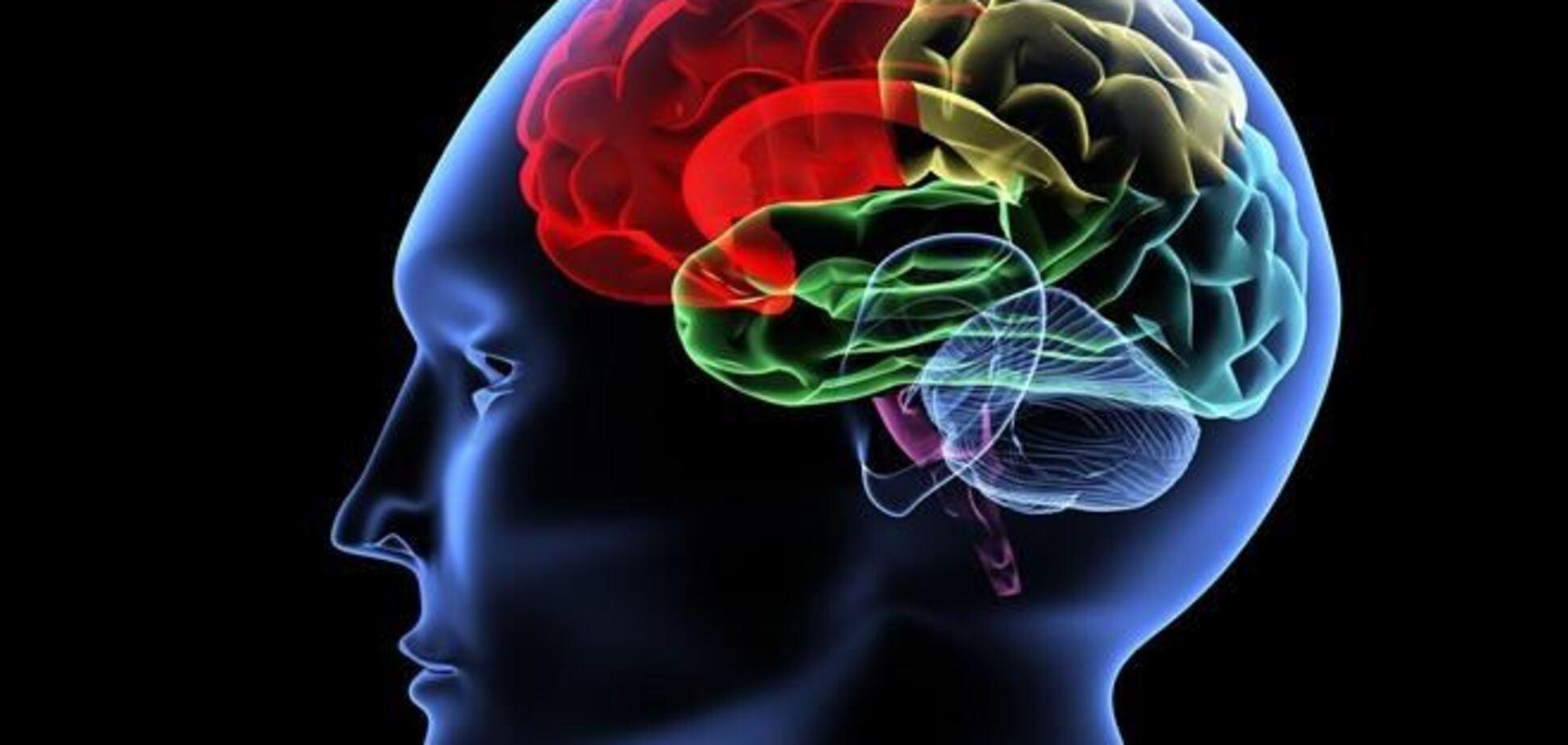 Мозг человека с возрастом может начать ржаветь - ученые