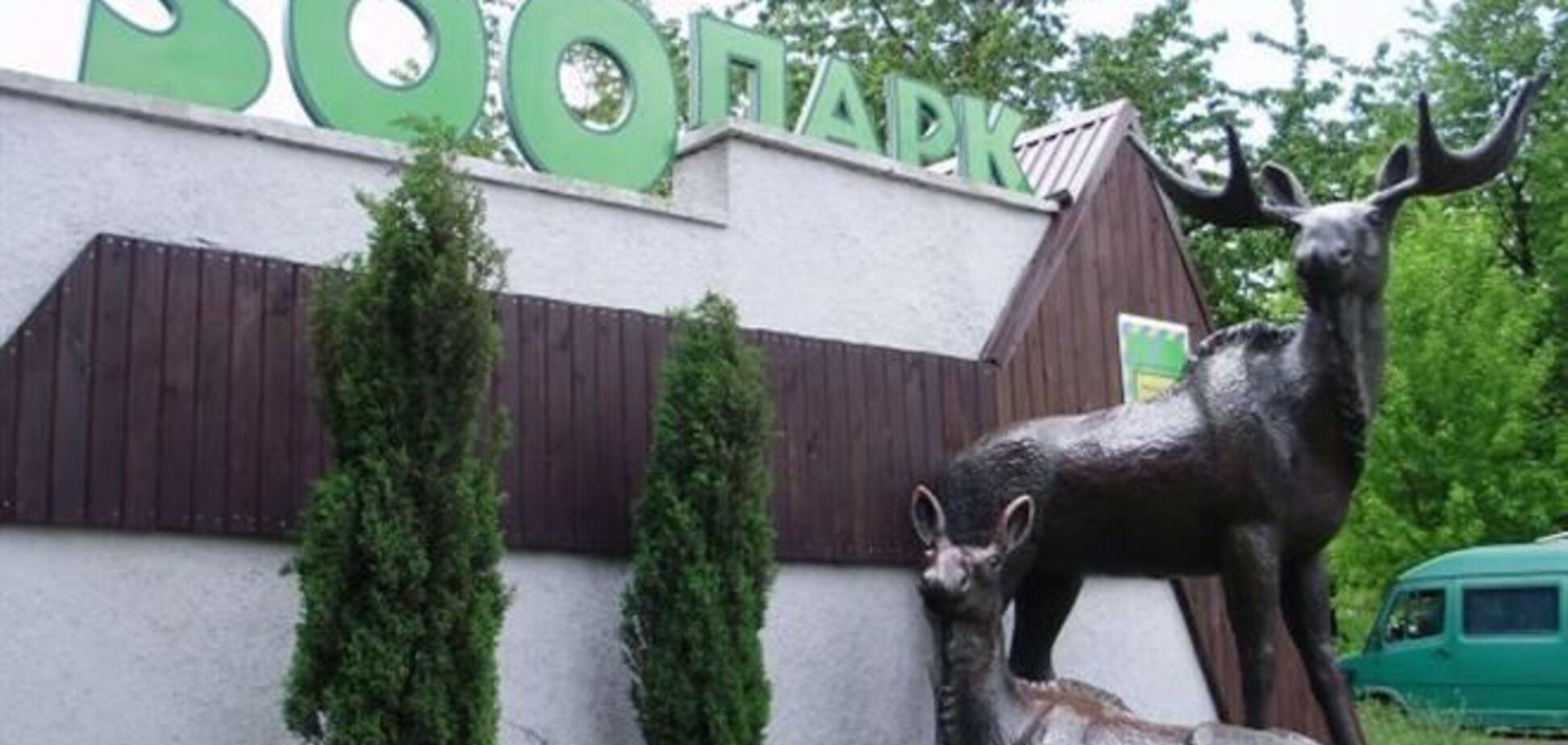 В Ривне ограбили зоопарк: похищены 100 тыс. гривен