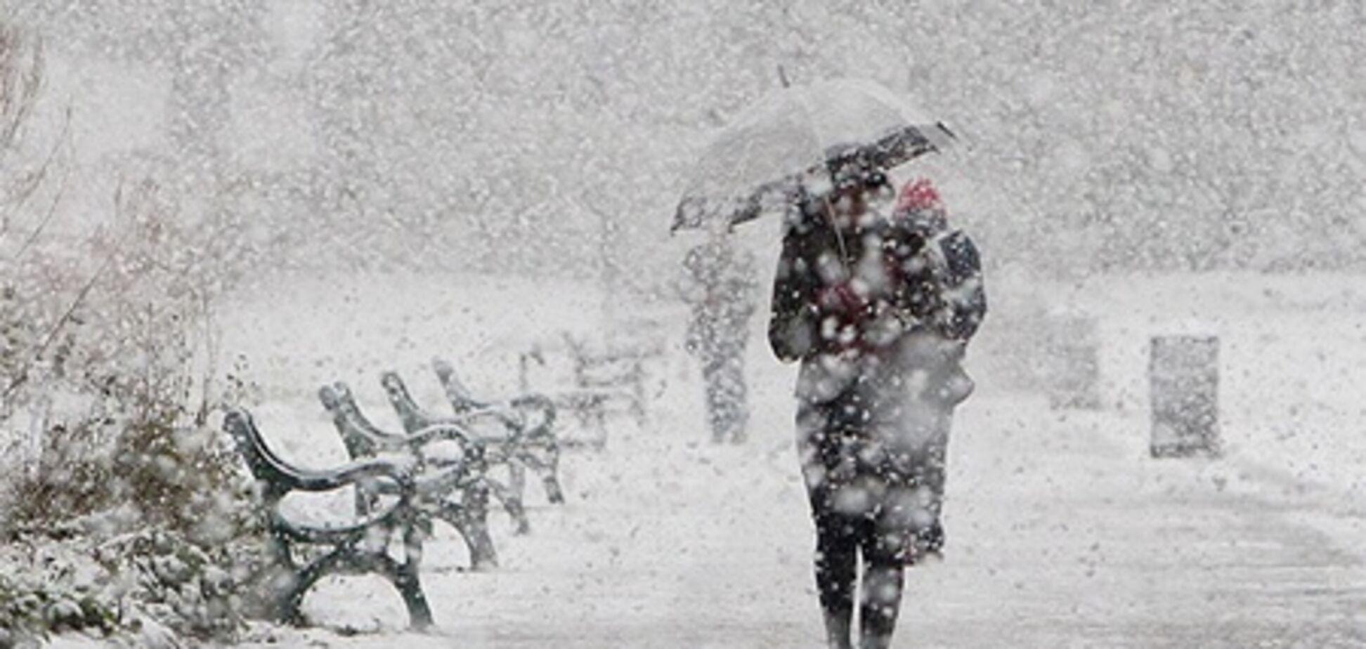 Во Львове за сутки выпала месячная норма снега