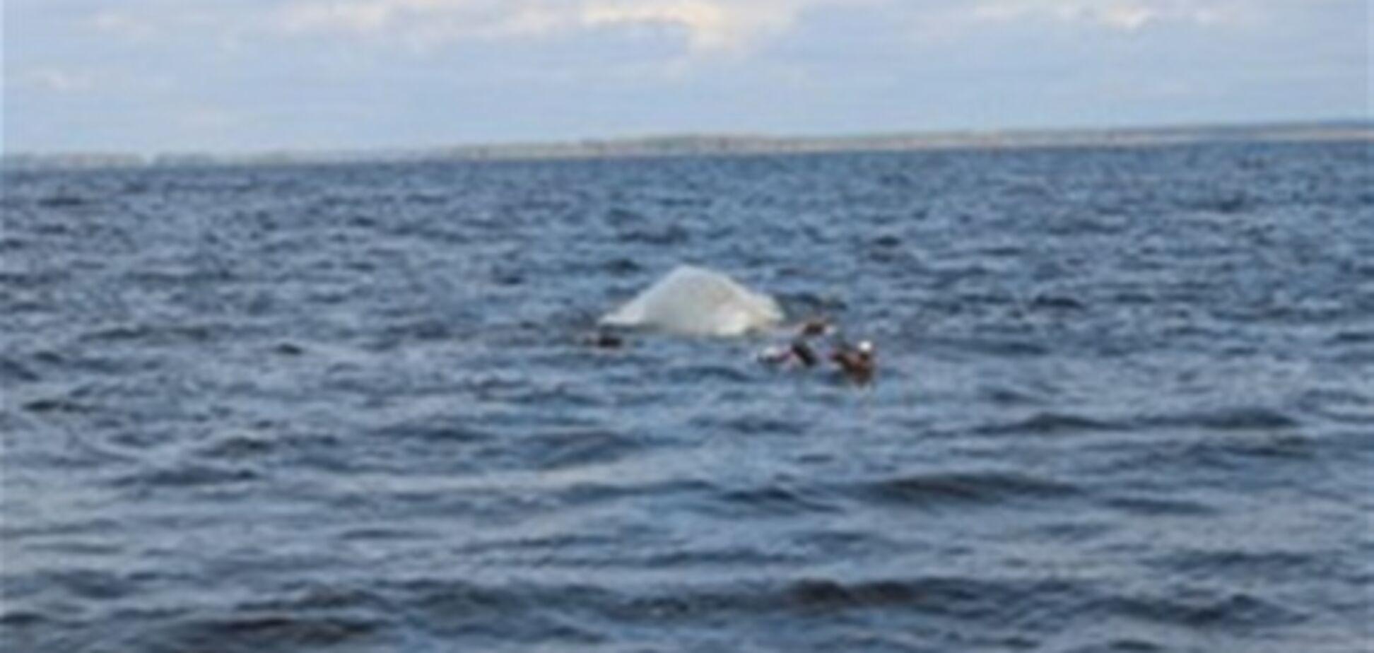 На Каховском водохранилище ищут двух пропавших рыбаков