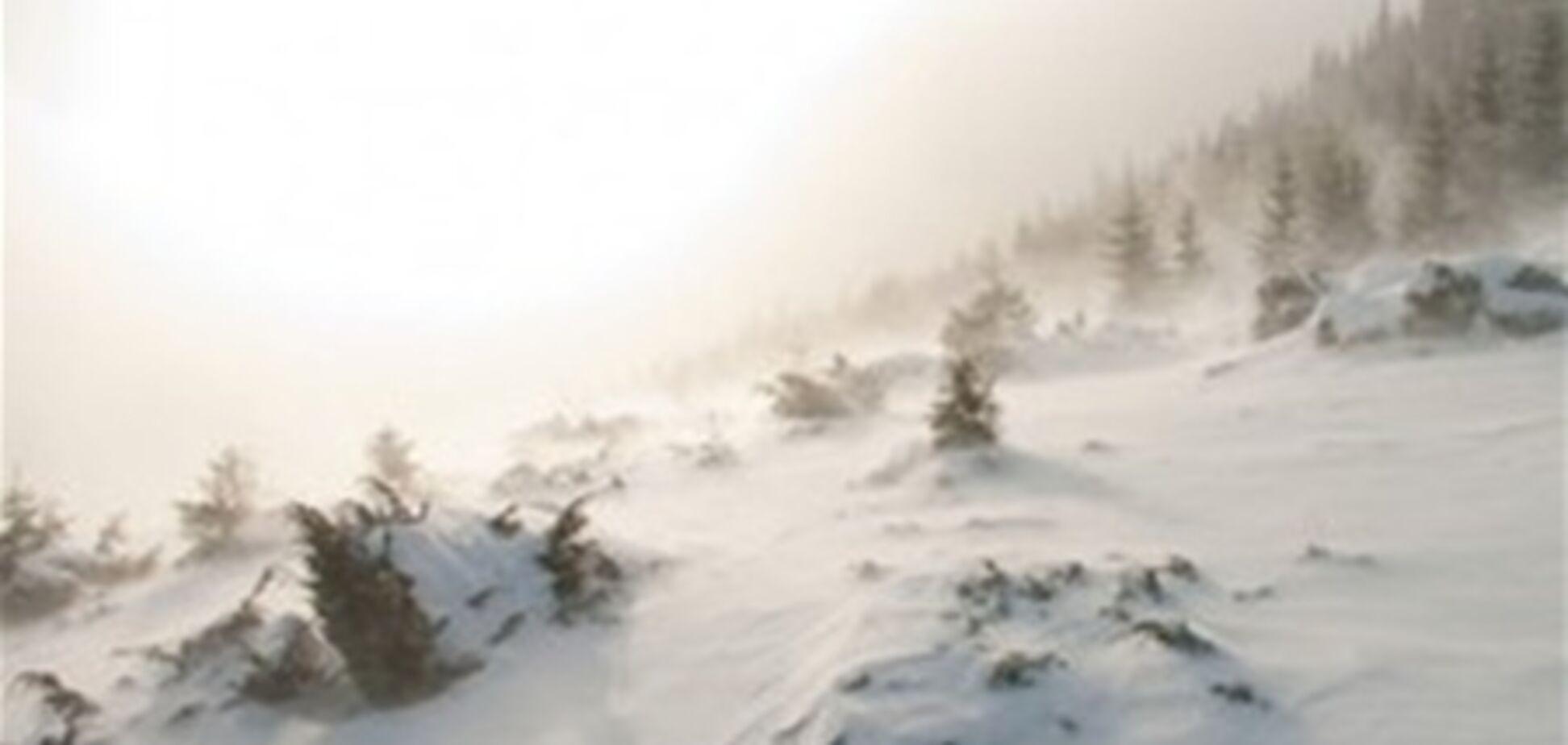 В снегах на Закарпатье нашли трех африканцев в кроссовках