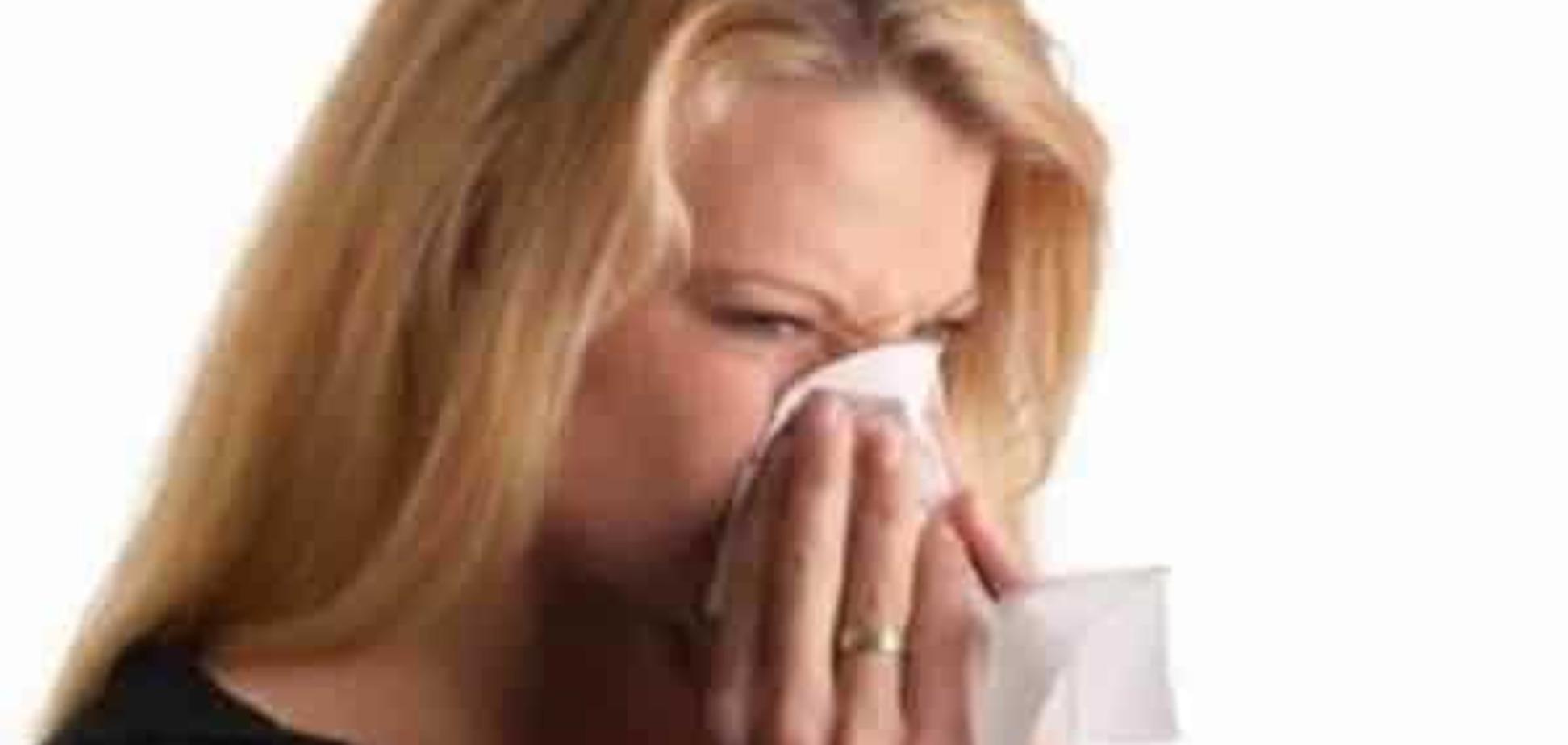 Потенциальные аллергены всегда окружают нас