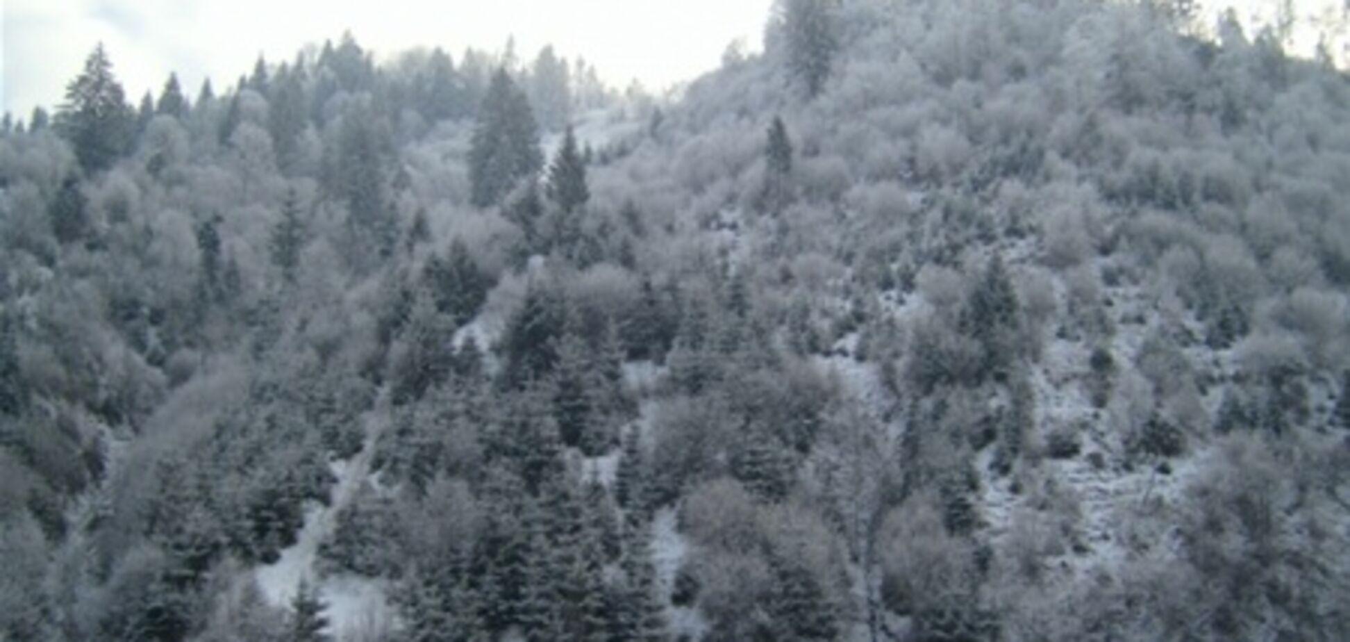 На Закарпатье нашли мужчину, который заблудился в горах