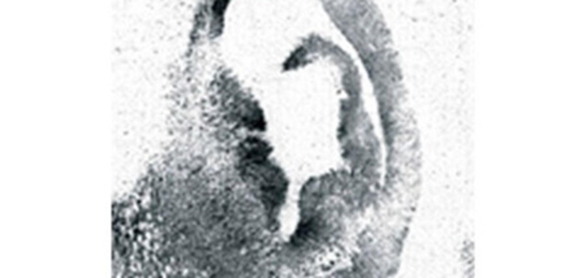 У Франції грузина-домушника знайшли за відбитками вух