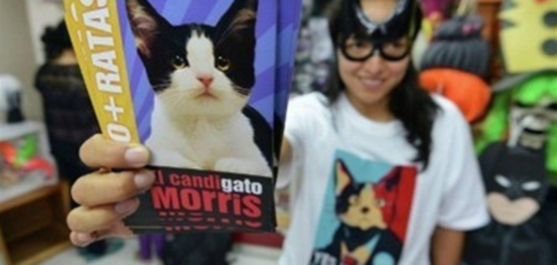 Вибори мера в Мексиці: кіт набрав 600 голосів