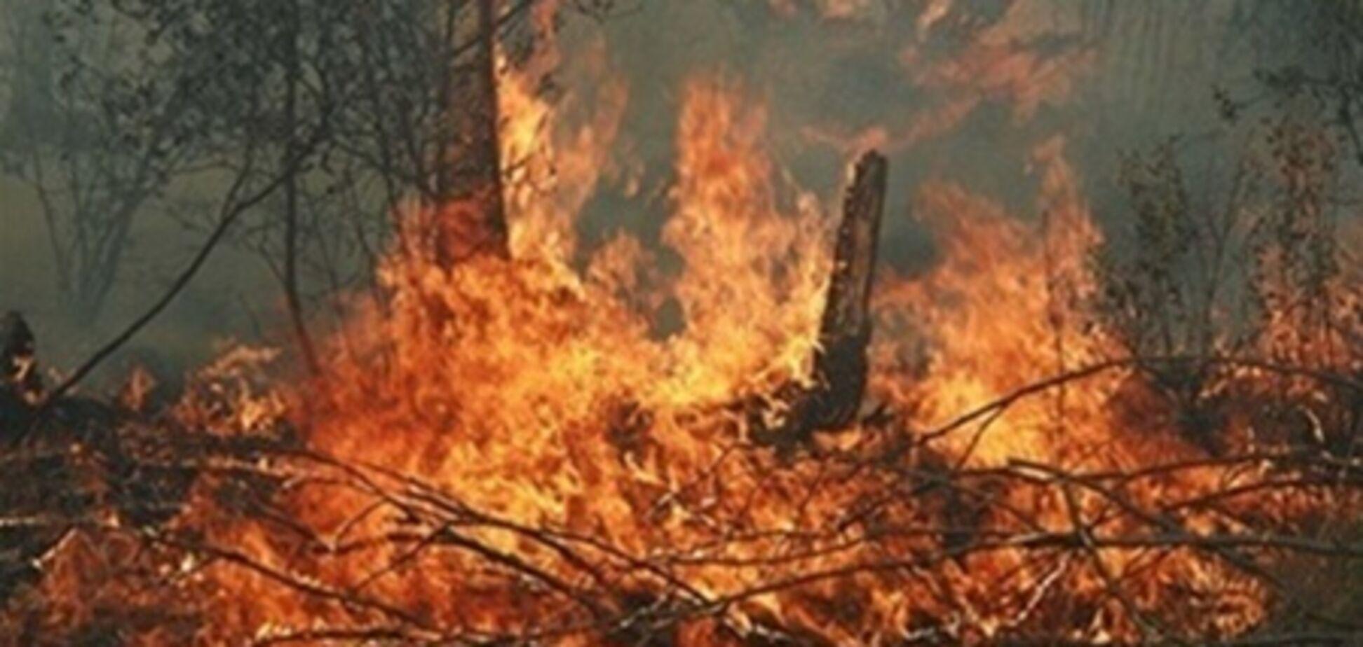 В Україні оголошено надзвичайну і висока пожежна небезпека
