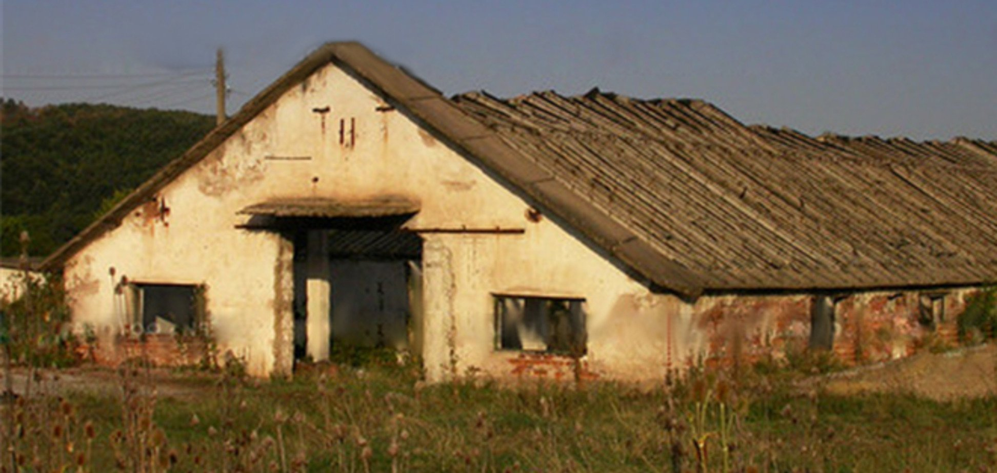 На Полтавщині стіна старої ферми вбила хлопця