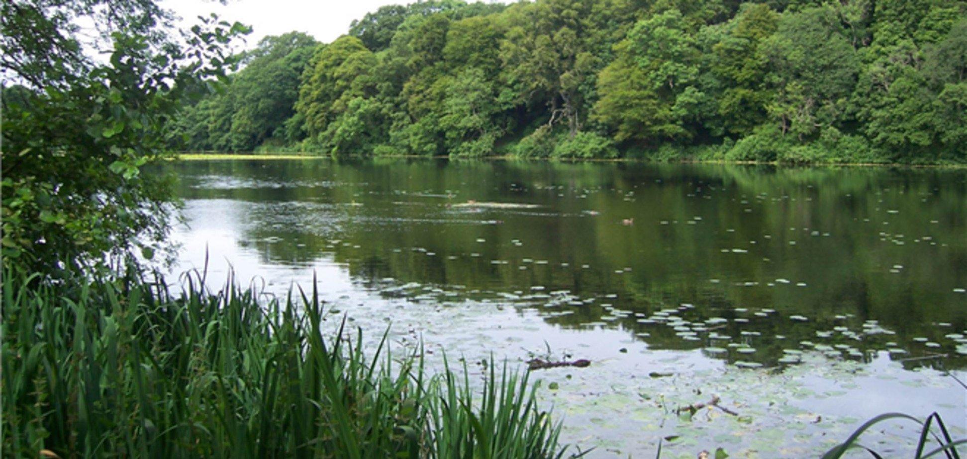 У Коломиї двоє дітей потонули в ставку