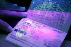 Паспортна лихоманка