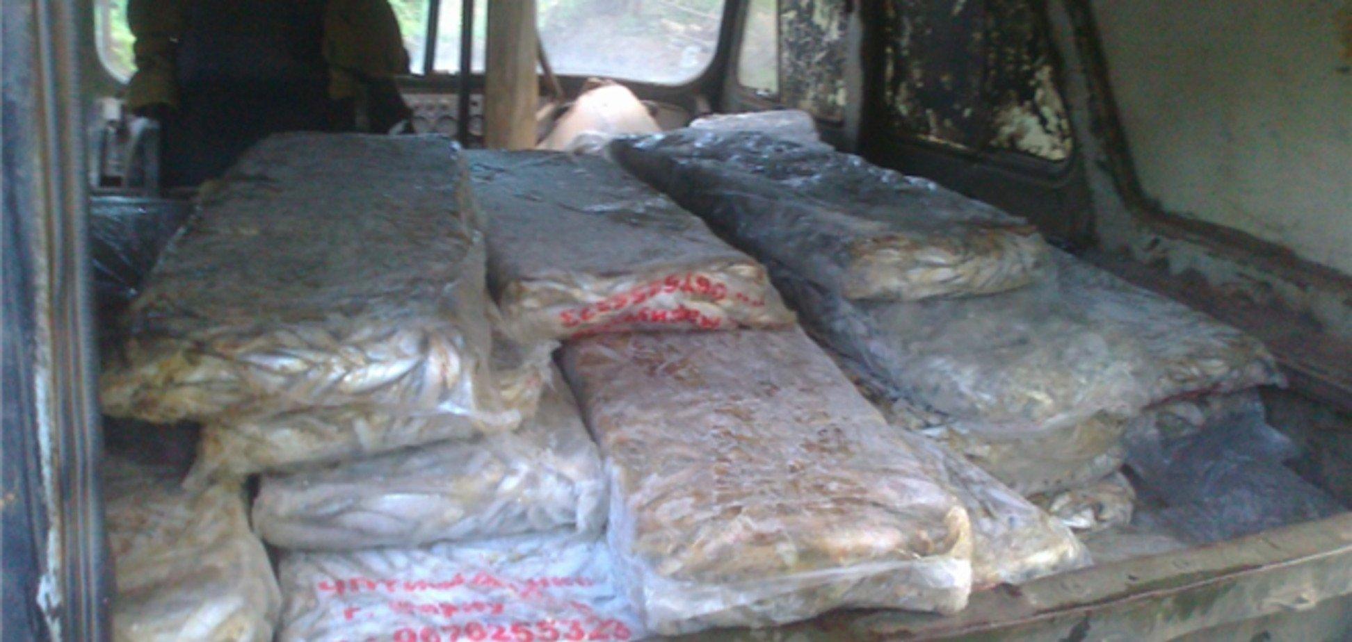 Россиянину не дали ввезти в Украину тонну свежемороженой рыбы