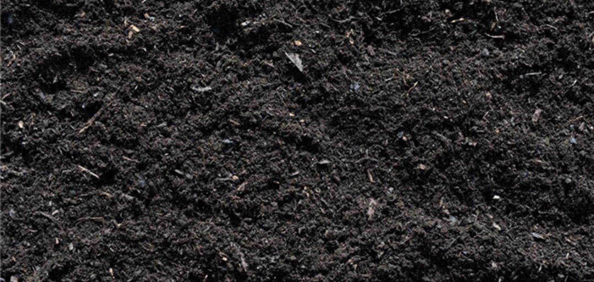 На Житомирщині під час ремонту дороги вкрали чорнозему на півмільйона гривень