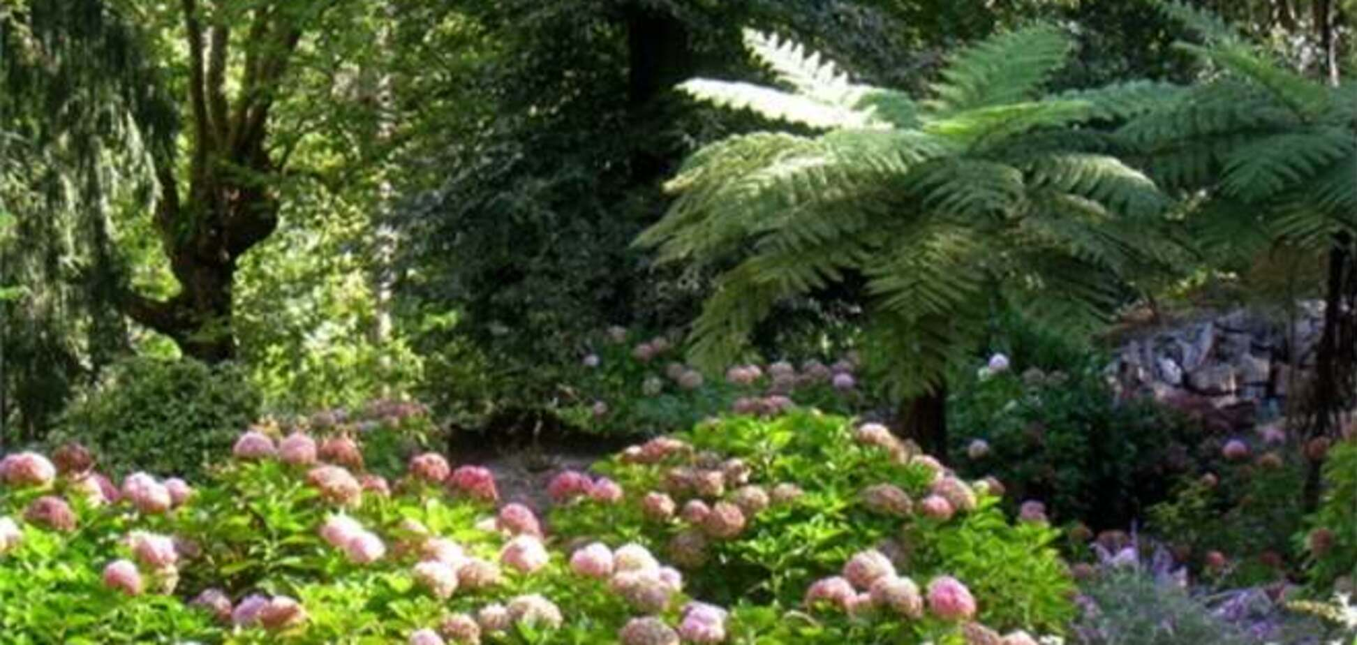 В Зимбабве создадут 'сады Эдема'