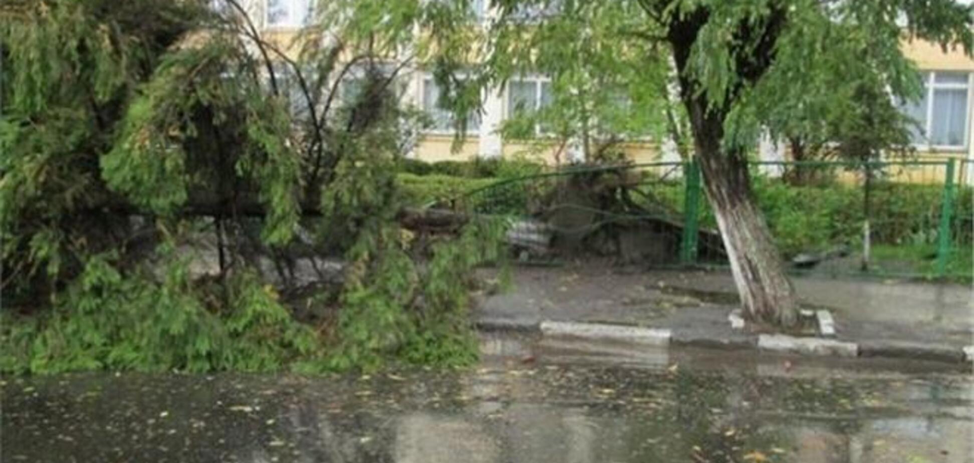 На Львівщині ліквідовують наслідки урагану
